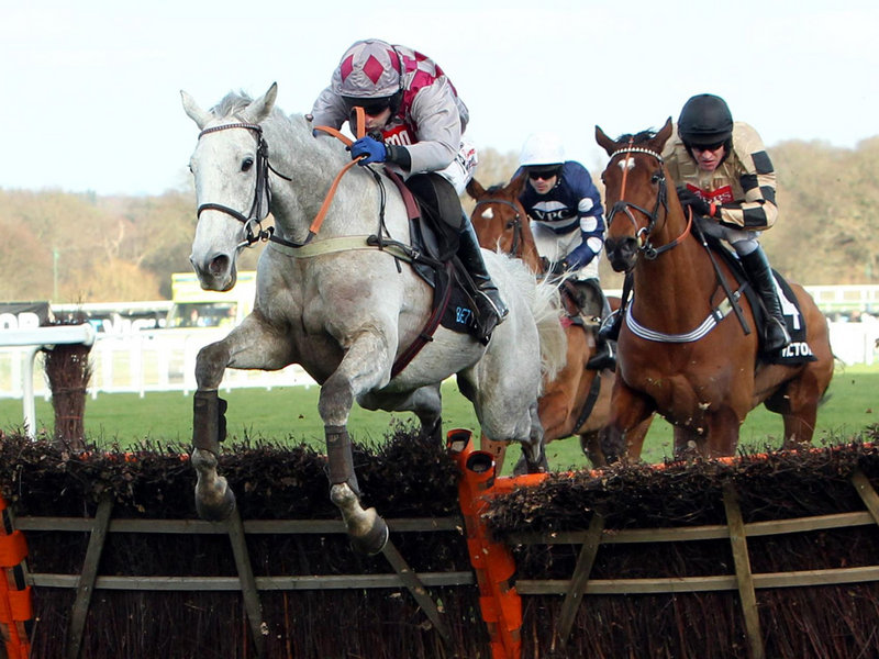 Hennessy Gold Cup Betting Tips