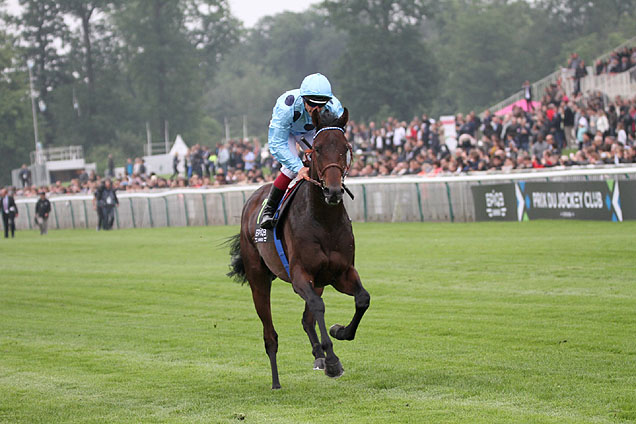 almanzor-eyes-qipco-champion-stakes-glory