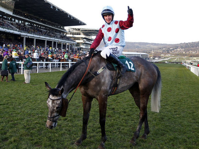 irish-cavalier-the-value-in-bet365-charlie-hall-chase