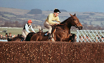 arkle-hennessy