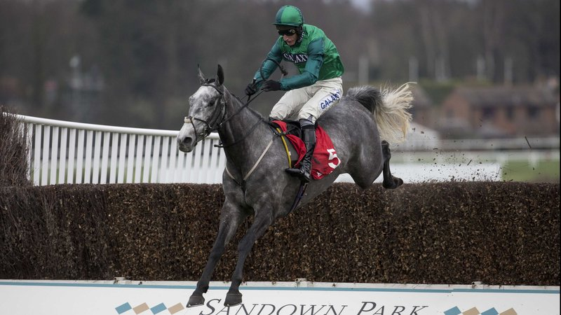 betting-tips-peter-marsh-handicap-chase