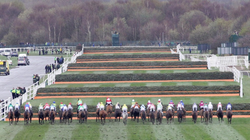 oddsguru aintree fences