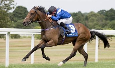 battaash horse