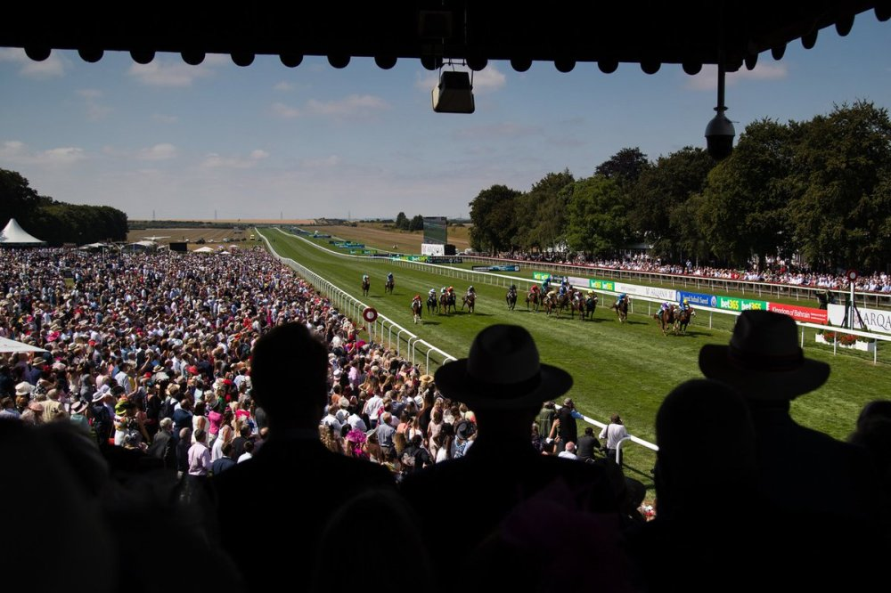 newmarket july course view
