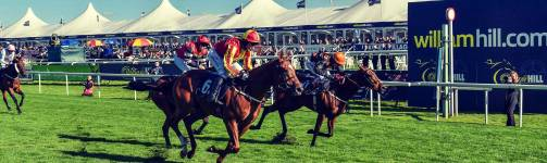 donny races handicap