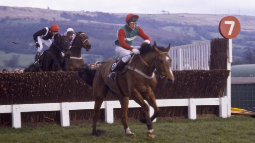 cotswold chase